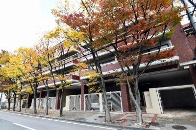 阪急甲陽園線「苦楽園口」駅徒歩17分 3LDK・南向き・最上階 2面バルコニー